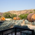 We slept in a barrel and drank tequila